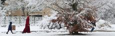 Lea fl%c3%bcchtlinge laufen im schnee 3