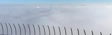 Nebel schmidt
