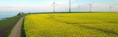 13 intensive landwirtschaft
