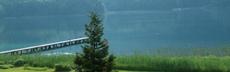 Einsamerbaum