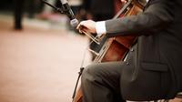 Pano cellist gespiegelt