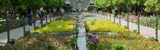 Garten shiraz